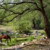 Zu Gast bei Freunden in San Marcos Sierra