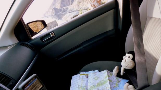 Reisebegleiter Cuddles navigiert besser als das 80er-Jahre-Navi